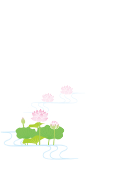 Lotus background 1