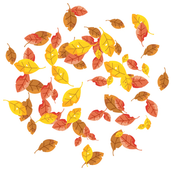 Clump of fallen leaves