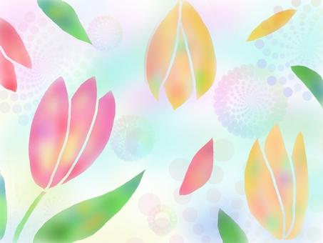Tulip (gradation))