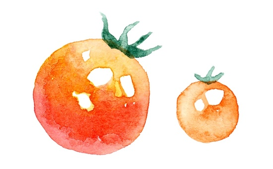 Two cherry tomatoes watercolor