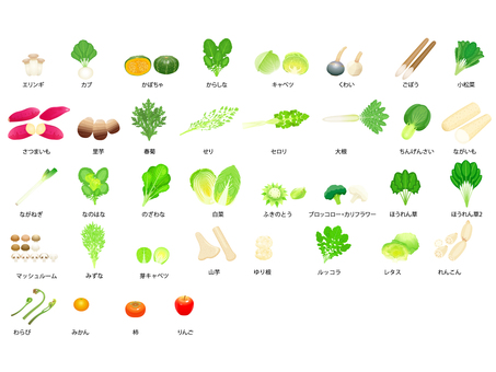 Winter vegetables / fruit icon set