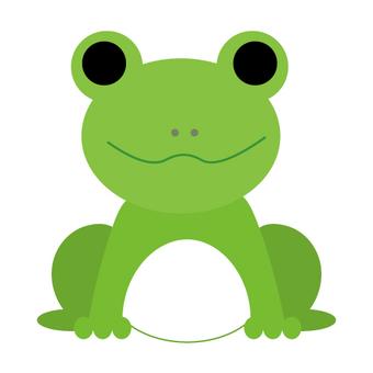 Rainy season (frog)