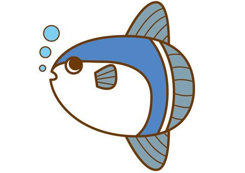 Sunfish 4c