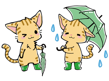 Rainy season tiger cat with umbrella