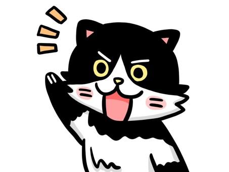 Cat (Hachi Ware) _ 02