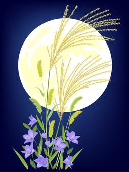 月見 ススキ 桔梗