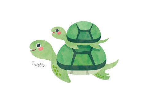 Turtle watercolor animal illustration material 006