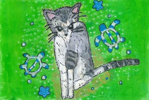 고양이 오키나와의 꿈