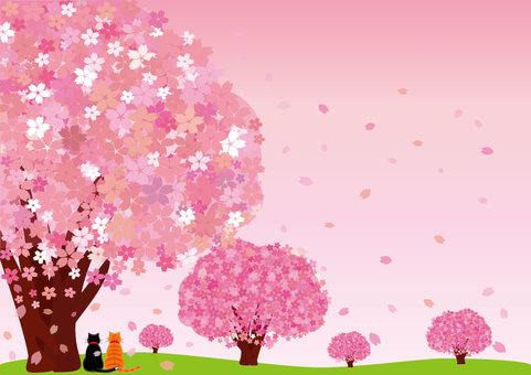 さくら (ポストカード/猫:桜色)