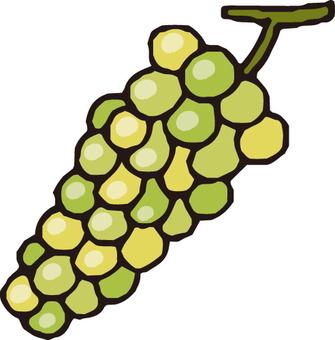 Fruit (Muscat / small grain)