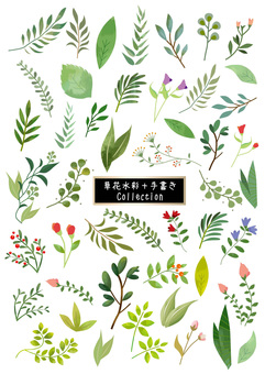 草花木 수채화 풍의 소재