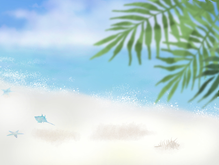 Beach and palm leaves