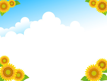 Sunflower, landscape 4