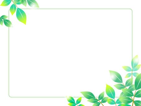 14. Fresh green, frame