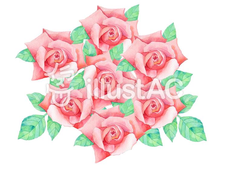 薔薇の花束 ★0379-Rのイラスト