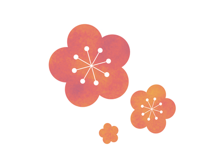 Yume cute plum blossoms