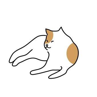 털 고르기 속의 고양이