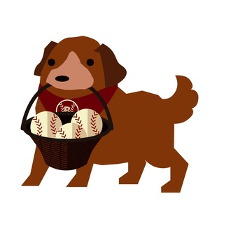 Baseball dog 1