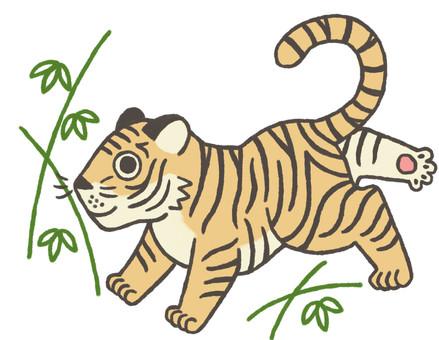 Tiger age illustration 4