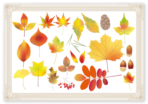 Fallen leaves _ picture frame _ horizontal size