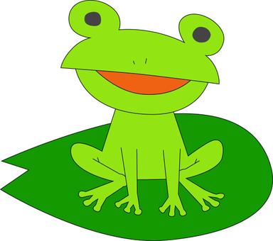 잎에 타고있는 개구리