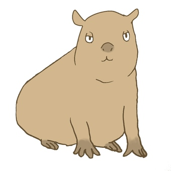 Capybara sitting