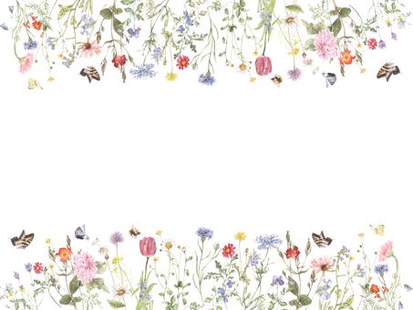 花枠379-花と蝶のパレードの花枠