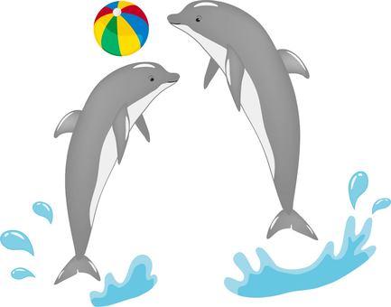 Dolphin beach ball gray