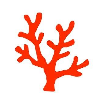 붉은 산호