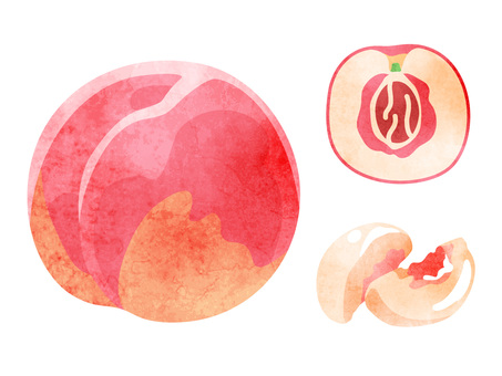 Food _ fruit _ peach _ no wire