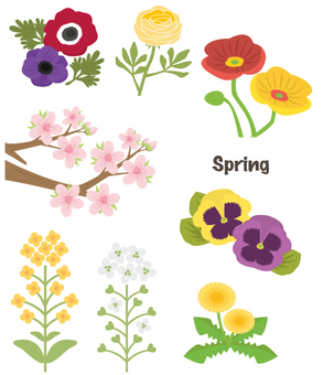 Spring flowers summary