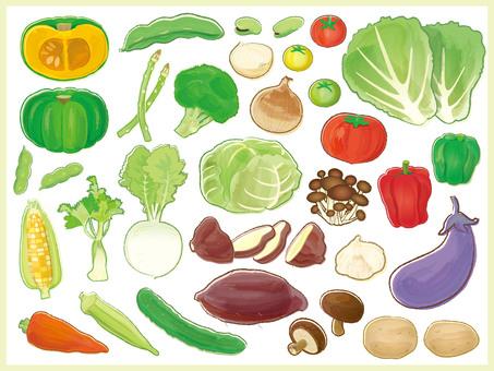 Vegetable illustration (fishing)