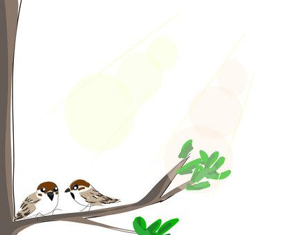 Asahi and a sparrow