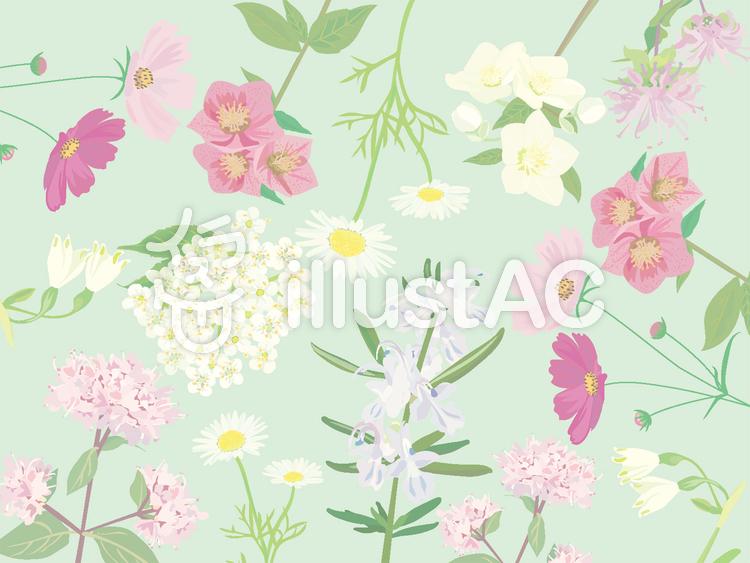 花柄の背景のイラスト