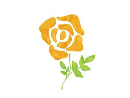 Polygon-like yellow rose
