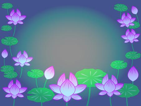 Lotus flower frame night