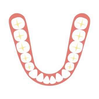 Dentist (tooth alignment)