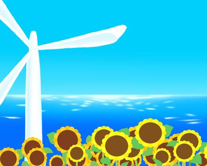Sunflower seaside 2
