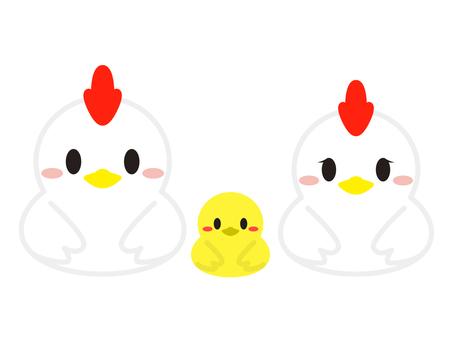 Rooster illustration 05