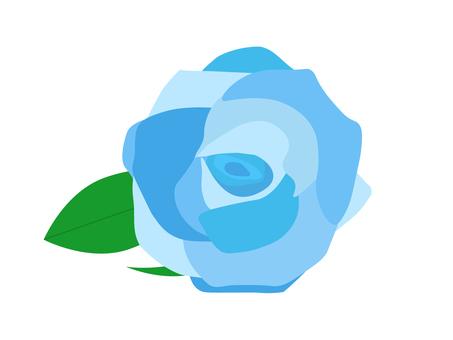 장미 꽃 5