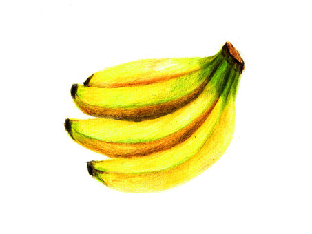Banana (color pencil drawing)