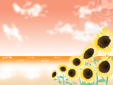 Sea _ Sunflower 2 _ sunset