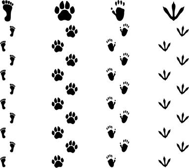 Footprint material