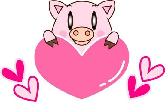 하트를 가진 돼지