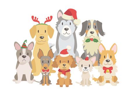犬集合_01_クリスマス