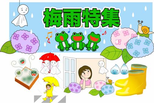 Variety of rainy season and rainy season