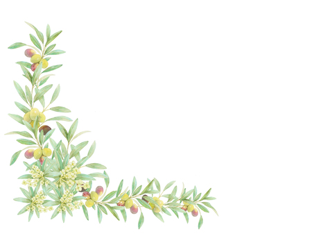Olive decorations ★ 0359-F