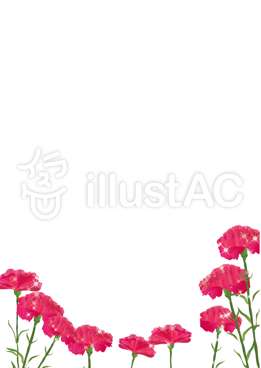 きらきらカーネーション母の日 5月の花 イラスト No 1097252無料