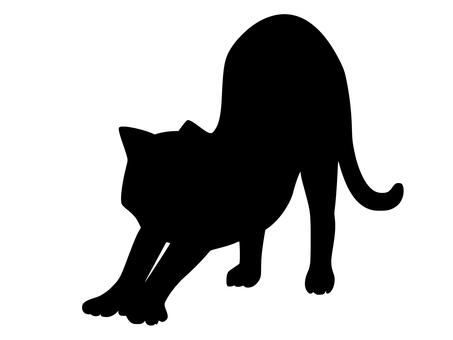 고양이 2 (A)