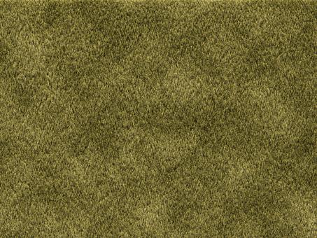 Grass (blight)